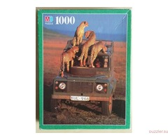 MB Puzzle. Curious Cheetah Family, 1000 деталей